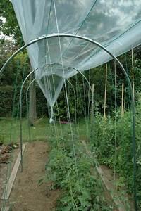 Abri A Tomate : abri temporaire a tomates largeur ~ Premium-room.com Idées de Décoration
