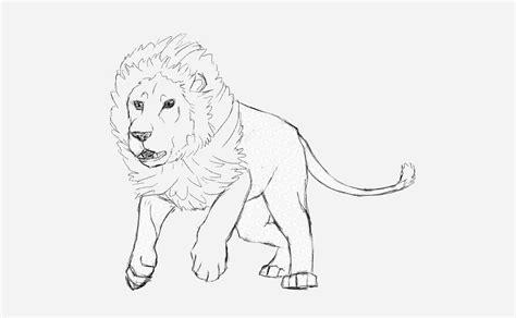drawn hunting cheetah pencil   color drawn hunting