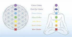 Seven Major Chakra Series