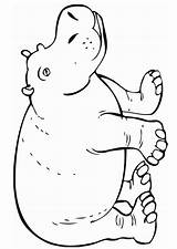 Coloring Hippo Safari Printable Animals Animal Hippopotamus Templates Jungle Sheets Drawing Crafts Craft Zoo Colorir Coloriage Rainforest Sheet Dieren Farm sketch template