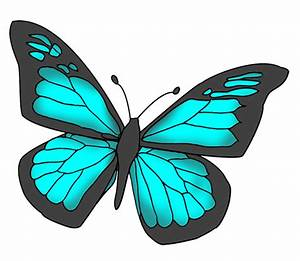 Blue Butterfly Drawings - ClipArt Best