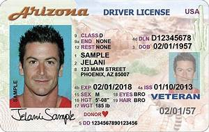 what does an arizona driver39s license look like driver With florida drivers license template