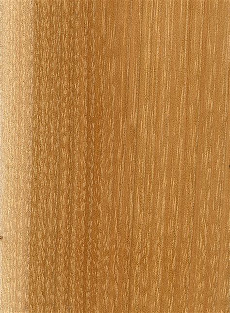hickory wood pignut hickory the wood database lumber identification hardwood
