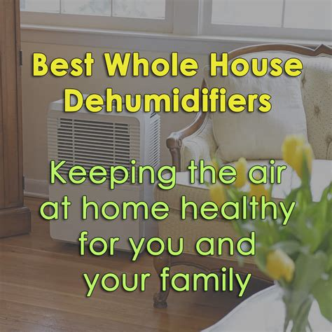 The 4 Best Whole House Dehumidifiers Models (keeping Your