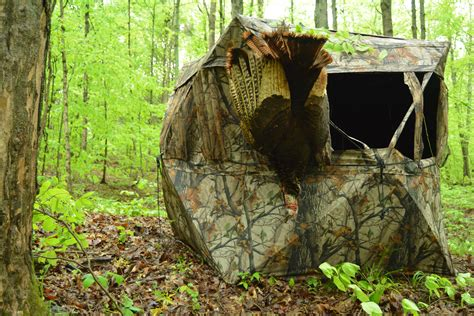 ground blinds for deer tips for setting up ground blinds roosted birds