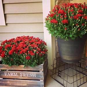 67, Best, Front, Door, Flower, Pots, U0026, Porch, Planters, 2021, Guide