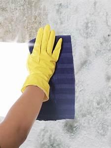 Anti Schimmel Tapete : schimmel von wand entfernen schimmel entfernen wand tipps ~ Lizthompson.info Haus und Dekorationen