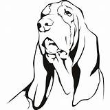 Hound Basset Coloring Dog Drawing Decal Coon Sketch Sticker Drawings Vinyl Printable Stickers Template Clipartmag Sheet Getdrawings Getcolorings Reflective sketch template