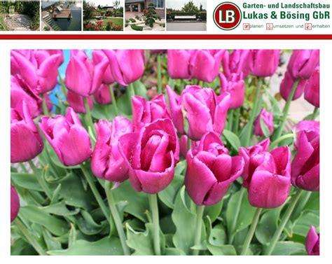 Garten Und Landschaftsbau Abschlussprüfung by Lukas B 246 Sing Gbr Garten U Landschaftsbau Muensterland De