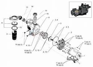 Water Pump Parts List Diagram  U2022 Downloaddescargar Com