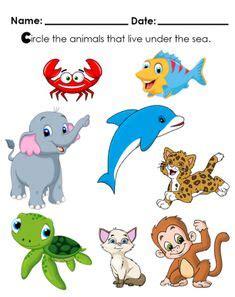 kindergarden worksheets images worksheets