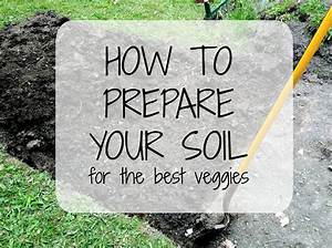 Preparing Your Soil (How to Guide) - Strayed from the Table