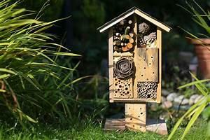 Asseln Im Garten : insekten im garten n tzlinge und sch dlinge das online ~ Lizthompson.info Haus und Dekorationen