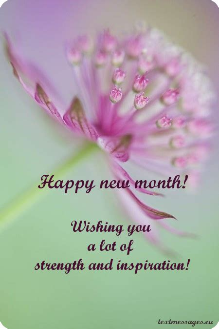 top  happy  month messages images   month wishes