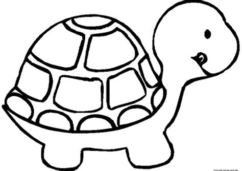 print  baby turtle coloring book pages  kidsfree