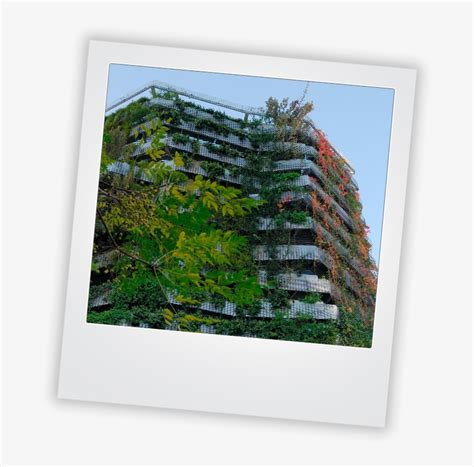 Vertical Garden Frame by Vertical Gardens Picture Frame Transparent Png 707x745