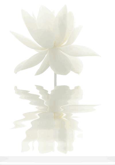 Schöne Beruhigende Bilder by White Lotus Simplicity Minimalism In 2019 White