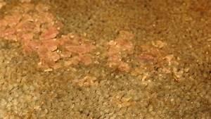 Alte Flecken Aus Teppich Entfernen : farbige wachsflecken aus stoff oder teppich entfernen ~ Lizthompson.info Haus und Dekorationen