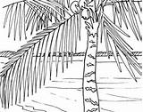 Coloring Beach Boardwalk Sunrise Palm Pages Ocean Adult Tree Themed Embroidery Scene Pattern Template sketch template