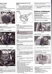 Descargar Manual De Taller Peugeot 207    Zofti