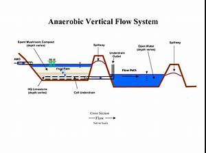 Diagram Of A Typical Vertical Flow System  With