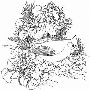 Flowers Coloring Pages | Minister Coloring