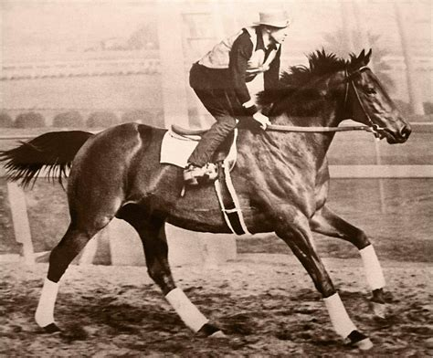 famous racehorses history most seabiscuit racehorse sea