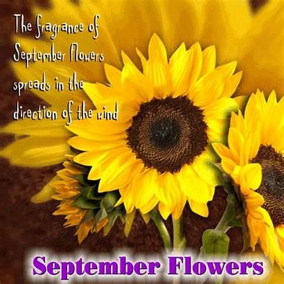 September Flowers Month Ecard Greetings Flower Card