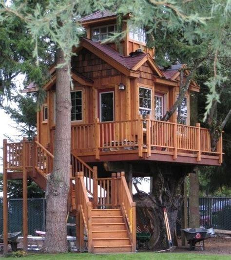 les amoureux de la cuisine belles maisons en bois dans les arbres