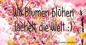 Blume Und Leben : wo blumen bl hen l chelt die welt spruch zum ~ Articles-book.com Haus und Dekorationen