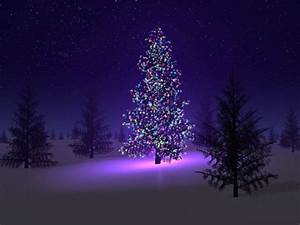 Christmas Tree Wallpaper HD Pictures – One HD Wallpaper ...