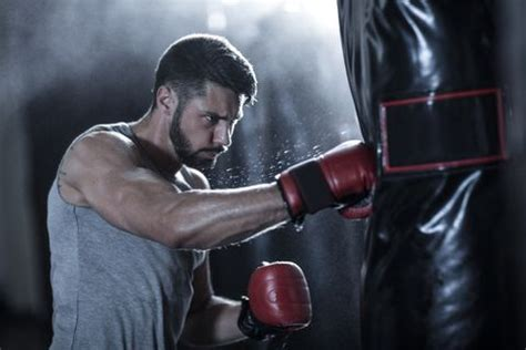 boxing workouts cardio boxing exercises  lose