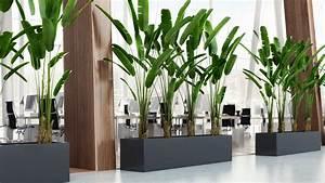 Blumenkübel Als Raumteiler : pflanzk bel beton blumentr ge blumenk bel gro ~ Michelbontemps.com Haus und Dekorationen