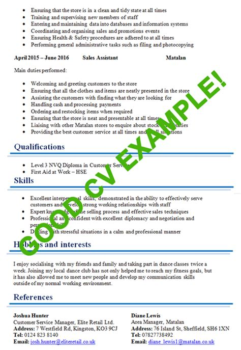 what is important for cv exles custom essay