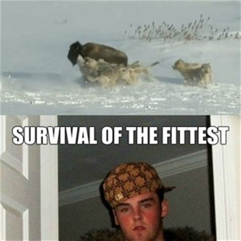 Survival Memes - survival of the fittest by rayyzo meme center