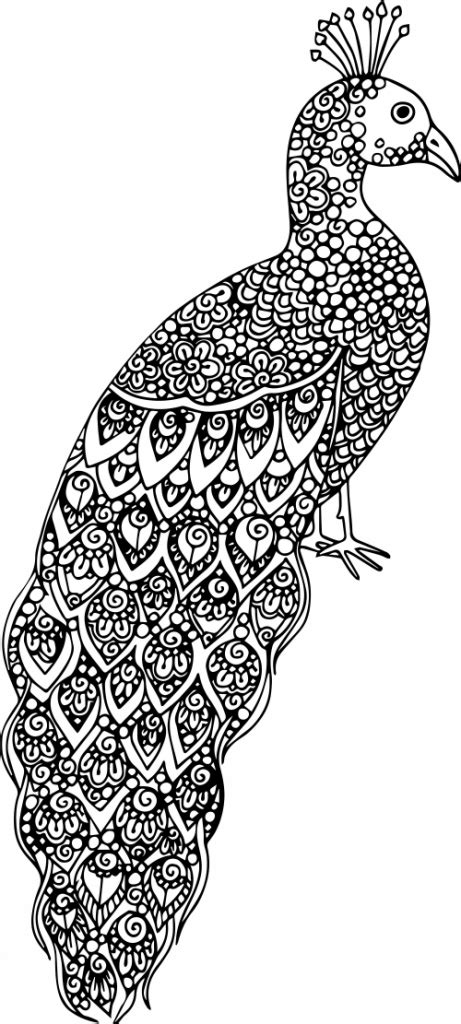 complex coloring pages  teens  adults  coloring pages  kids