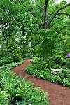 Three Dogs in a Garden: Using Lines to Advantage in a shade garden path ideas
