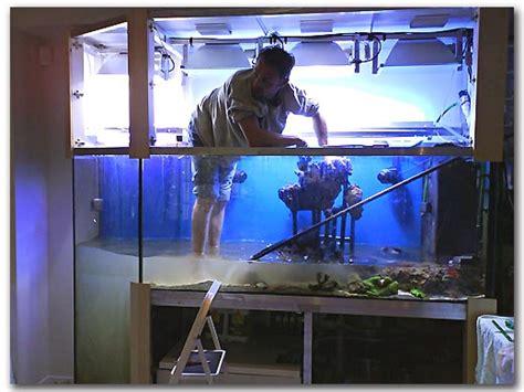 un aquarium avec fosse