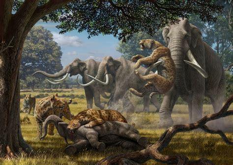 large violent animal packs shaped  ecosystems