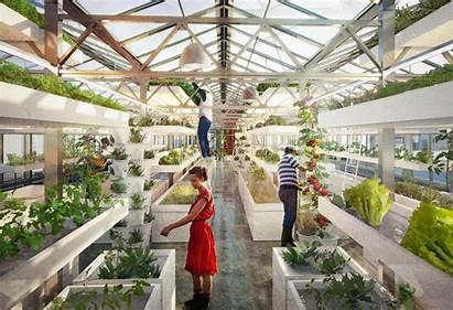 Urban Farming Ripple 2ser Greenhouse