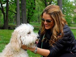 Pampered Pups From HGTV's Posh Pets Posh Pets