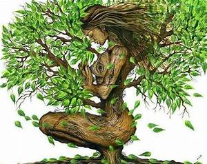 213 best images about Mother Earth on Pinterest   Trees ...