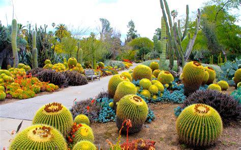 Botanischer Garten Cluj by Botanischer Garten San Marino Hintergrundbilder
