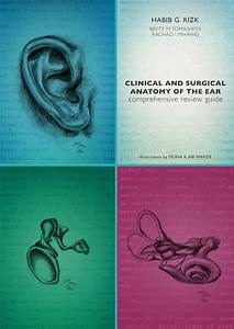 Clinical And Surgical Anatomy Of The Ear Comprehensive
