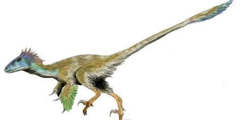 The Velociraptors In The Jurassic Park Movies Are