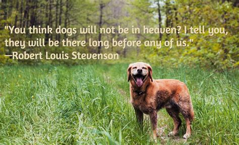 pet gate 13 loss quotes comforting words when losing a