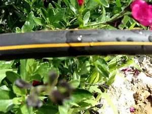 Tuyau Goutte À Goutte : goutte goutte youtube ~ Dode.kayakingforconservation.com Idées de Décoration