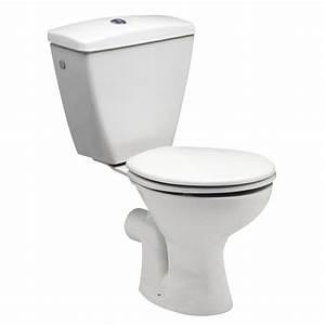 Toilettes Sèches Leroy Merlin : lesson les toilettes en france ~ Melissatoandfro.com Idées de Décoration