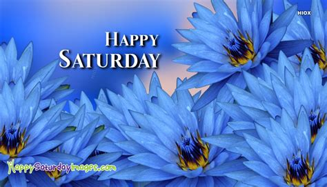 happy saturday images  blue flowers