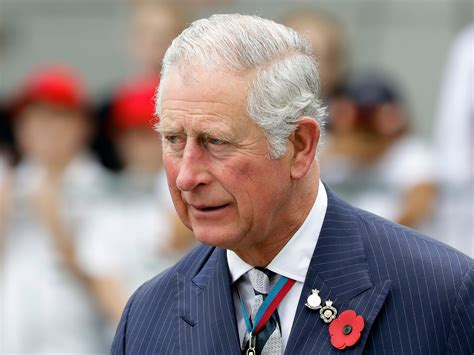 Prince Charles 'lobbied for climate policy change without ...